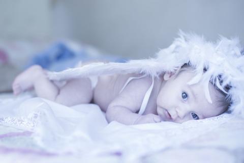 Newborn 011